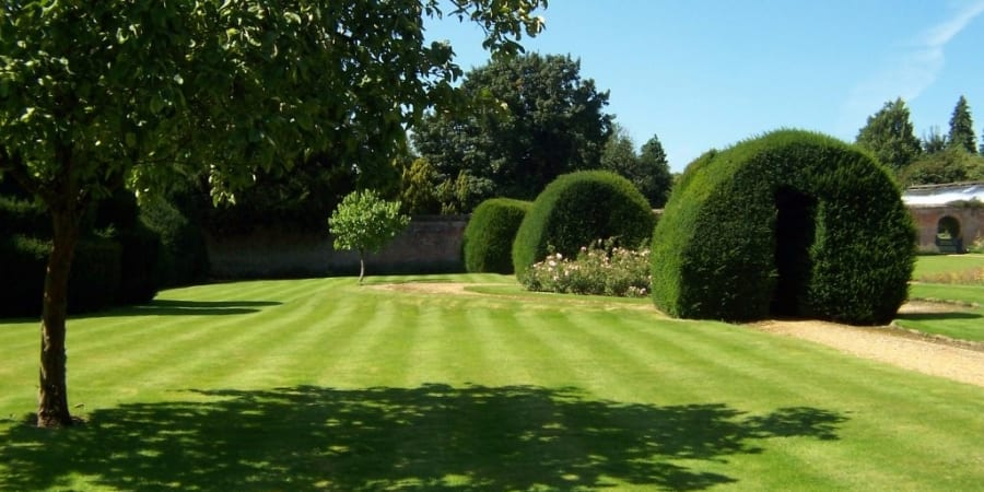 Garden maintenance | Garden Work | Garden Maintenance Northamptonshire | Higham Landscapes